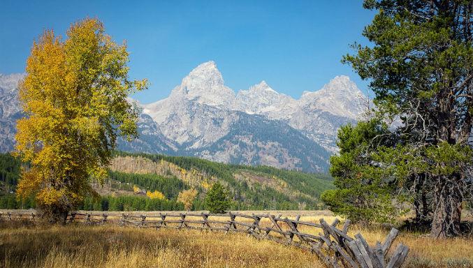 Wyoming Tribe วางแผนที่จะแนะนำการเดิมพันกีฬาที่คาสิโน